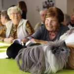Médiation animale à l'accueil de jour thur doller