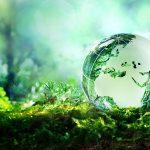 Environnement : faire partie de la solution